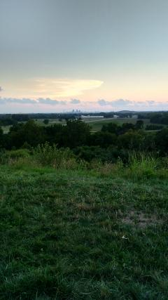 view from the top of Cahokia